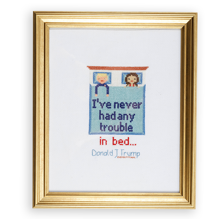 """A crossstitch of Donald Trump in bed with a woman, with the quote on the sheets saying """"I've never had any trouble...in bed."""""""